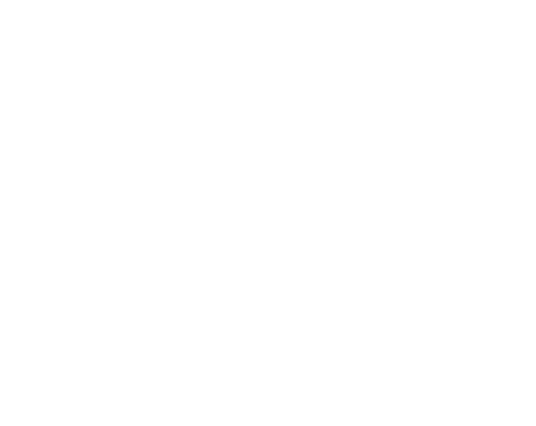 dog pawprints white